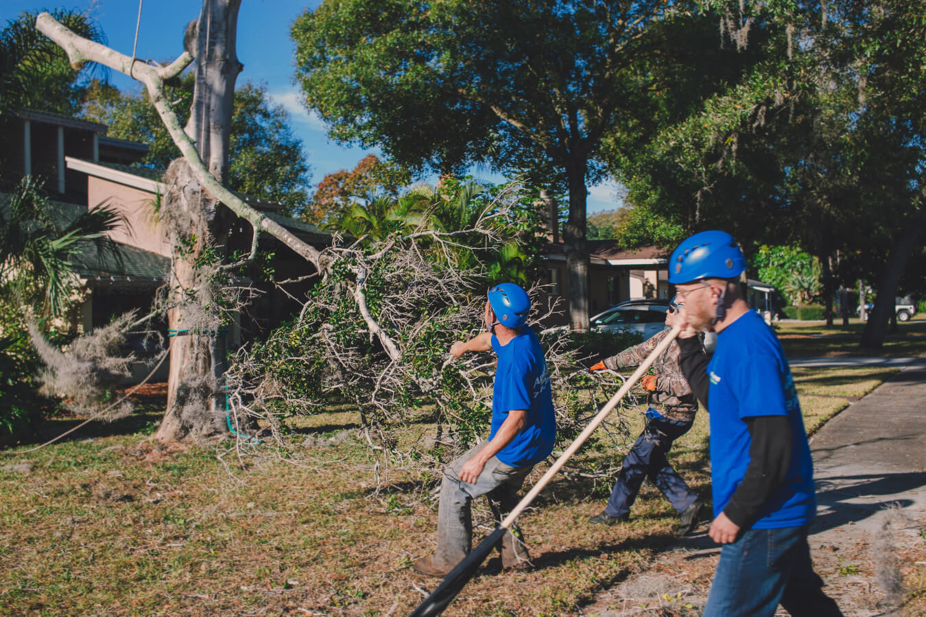Residential Tree Services-Oceanside CA Tree Trimming and Stump Grinding Services-We Offer Tree Trimming Services, Tree Removal, Tree Pruning, Tree Cutting, Residential and Commercial Tree Trimming Services, Storm Damage, Emergency Tree Removal, Land Clearing, Tree Companies, Tree Care Service, Stump Grinding, and we're the Best Tree Trimming Company Near You Guaranteed!