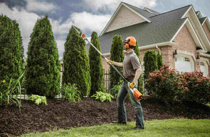 Yaldora-Oceanside CA Tree Trimming and Stump Grinding Services-We Offer Tree Trimming Services, Tree Removal, Tree Pruning, Tree Cutting, Residential and Commercial Tree Trimming Services, Storm Damage, Emergency Tree Removal, Land Clearing, Tree Companies, Tree Care Service, Stump Grinding, and we're the Best Tree Trimming Company Near You Guaranteed!